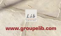 Groupe LIB
